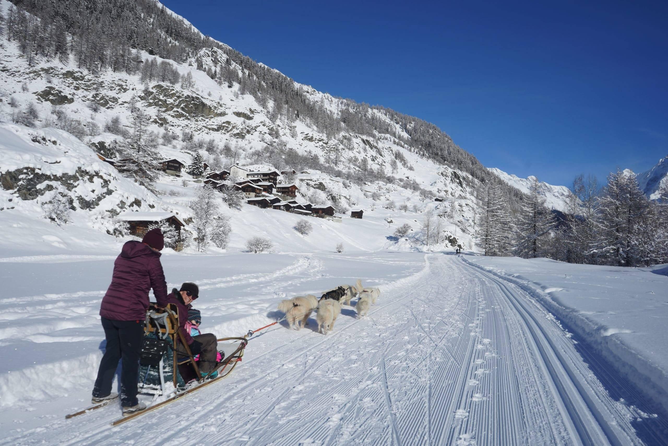 Familien- und Paar-Schlittenfahrten im Lötschental